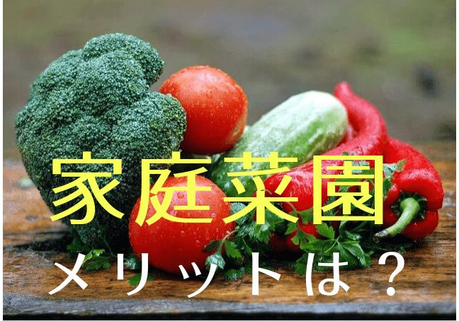 家庭菜園のメリット|新鮮な野菜が食べられるだけじゃない!