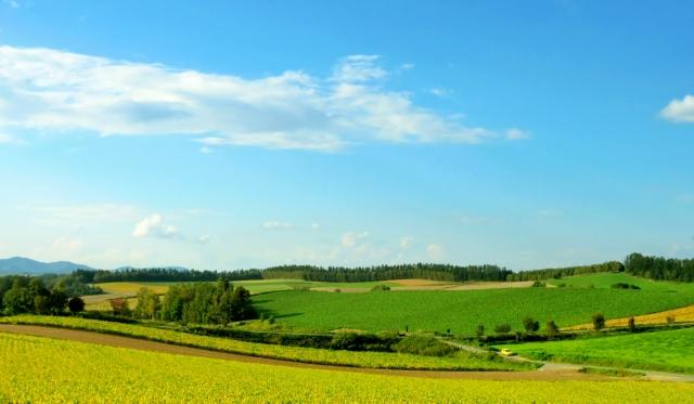 田舎への移住はなぜ失敗しやすいのか?|根本的な原因とは・・?